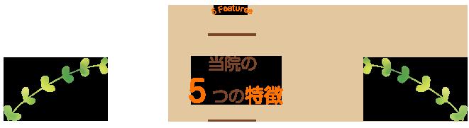当院の5つの特徴